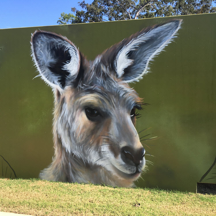 Redcliffe Rail Pathway Mural - Artist David Houghton